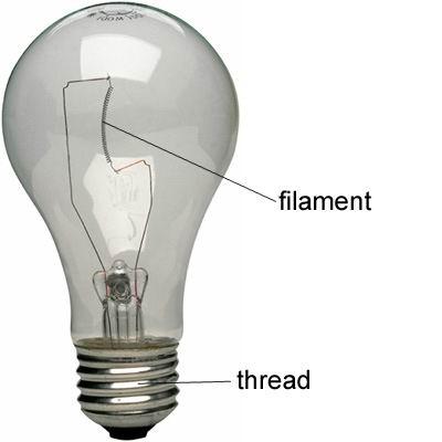 单词:filament的图片解释