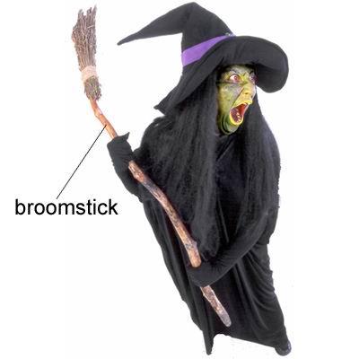 单词:witch的图片解释